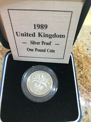 1989 United Kingdom Silver Proof 1 £ Coin