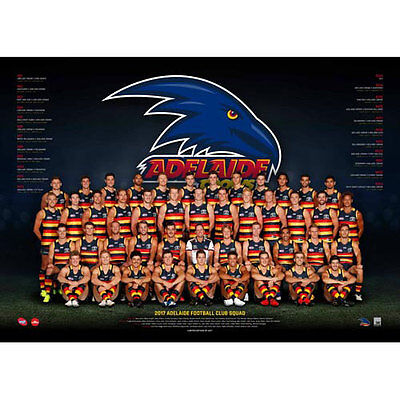 AFL 2017 Team Adelaide Crows POSTER 60x80cm NEW Aussie Football League Players