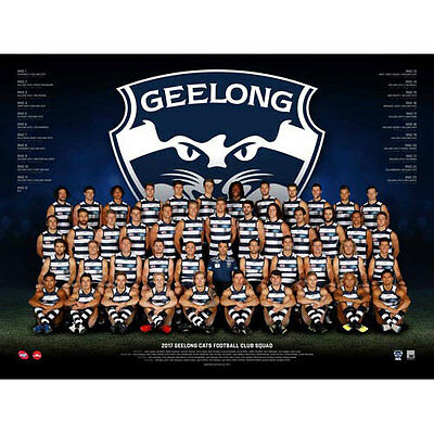 AFL 2017 Team Geelong Cats POSTER 60x80cm NEW Aussie Football League Players