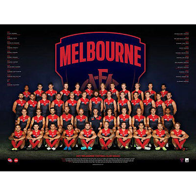 AFL 2017 Team Melbourne Demons POSTER 60x80cm NEW Aussie Football League Players