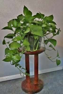 "Nice! Antique Wooden (Mahogany?) Plant Stand Table 18"" Tall (Plant Not Included)"