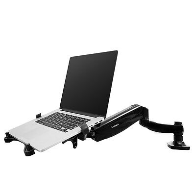 2in1 Monitor Laptop Mount Desk Desktop LCD Arm Tablet Holder Stand Notebook