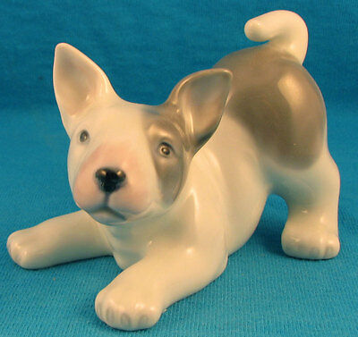 DNC porcelain bull terrier playbow puppy dog FREE SHIPPING pup adorable