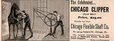 1896  Ad Chicago Flexible Shaft Co Horse Clipper Stable