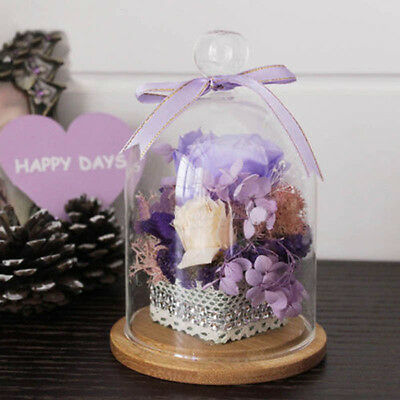 Glass Display Cloche Bell Jar Dried Flower Vase Dome Micro Landscape Bottle CA