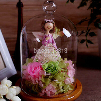 Glass Display Cloche Bell Jar Dried Flower Vase Dome Micro Landscape Bottle US