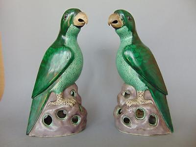 Pair of Beautiful 19th Century Chinese Famille Vert Parrots