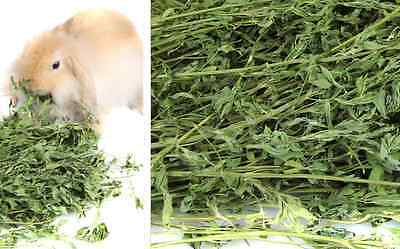 1Pack of Alfalfa Grass for  Chinchilla Rabbit