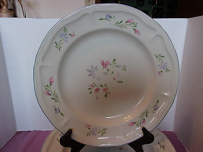Dinner Plates With Flowers Made In China Set Of 6 & Flowers Made From China Plates - Flowers Healthy