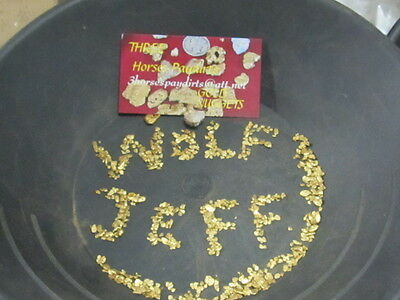 10 ounces, Gold in every spoon ALASKA GOLD NUGGET Blacksand Paydirt Cons