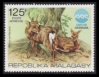 Malagasy Rep. Sika Deer Airmail SG#324