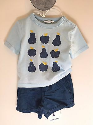 Country Road Baby Boys Apple Pear Blue Tee T-shirt 00 3-6 months BNWT RRP$29.95