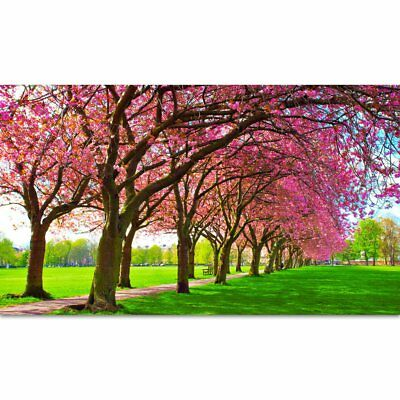 Spring Backdrop 3m x 1.7m