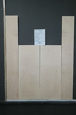 Tonewood Birdseye maple 1336 Tonholz Guitar Builder Luthier Acoustic Backs Side