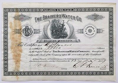 1887 The Brainerd Water Co. Stock Certificate - RARE ISSUED - BEAUTIFUL VIGNETTE