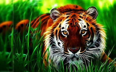 HD Canvas Print home decor wall art painting Tiger No Frame 24 H100