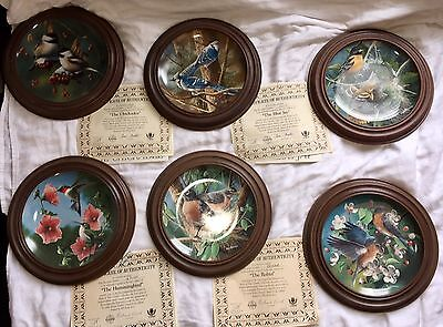 6 Knowles China Birds of Your Garden Limited Edition Plates By Kevin Daniels Lot