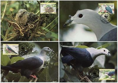 Tokelau WWF Pacific Imperial Pigeon 4 official Maxicards