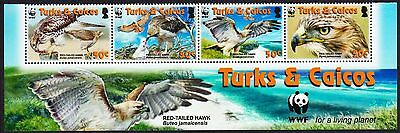 Turks and Caicos WWF Red-tailed Hawk Bottom Strip of 4v with WWF Logo SG#1870/73