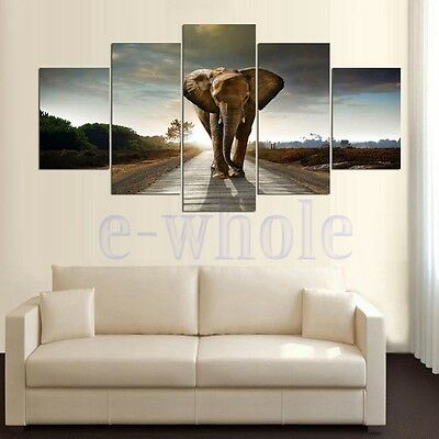 Unframed HD Canvas Print Wall Art Painting Picture Poster Home Decor Elephant K6
