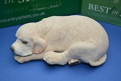 Country Artists Best In Show Sleeping Labrador Puppy 01994