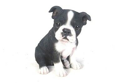 Sitting BOSTON TERRIER Puppy Dog Life Like Realistic Statue Home Garden  Decor