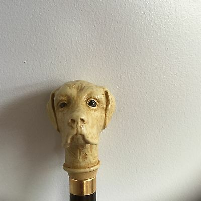 Dog head walking stick on rosewood cane labrador