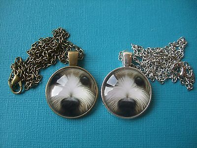 Bearded Collie Dog Face Necklace & Pendant Glass Metal Chain Silver Bronze Tone