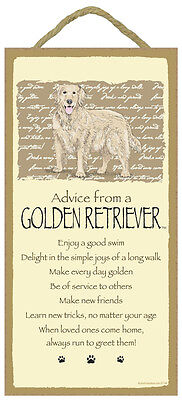 """Advice from a Golden Retriever Sign Plaque Dog 5"""" x 10""""  Pet Lovers Gift"""