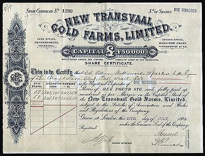 1905 South Africa: New Transvaal Gold Farms