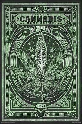 ORGANIC CANNABIS - HOME GROWN WEED POSTER 24x36 - 420 MARIJUANA SMOKING 810