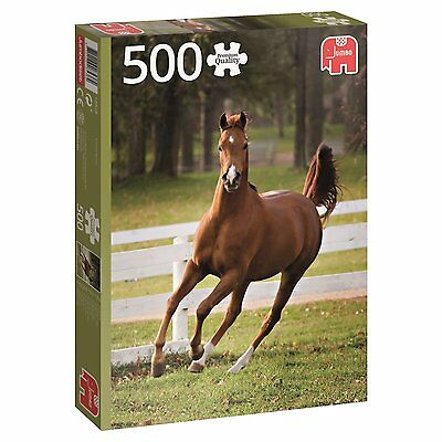 500 Piece Jumbo Jigsaw Puzzle - Playful Foal Horse Pony 18538