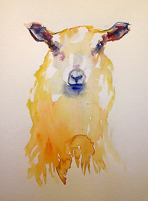 Original Watercolour Painting of a Sheep Looking Ahead A4