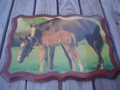 Old Vintage Mare & Foal Picture Sign Equine Pony Horse Farm Vtg Hanging Display
