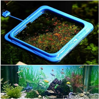 Station Floating Feed Tool Aquarium Feeding Ring Fish Tank Buoyancy Circle