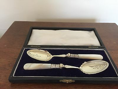 Pair Of Lovely Cased Silver Plated  & Mother Of Pearl Preserve Spoons (Mop 5)