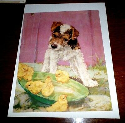 Vintage 1935 Print By Dianne Thorne~ Fox TERRIER And Chicks ~