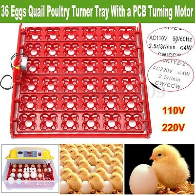 110V/220V Chicken Incubator Egg Turning Tray W/ Motor For 36 Eggs/144 Quail Eggs