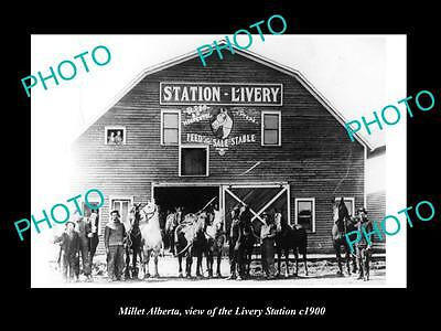 OLD LARGE HISTORIC PHOTO OF MILLERT ALBERTA, THE LIVERY STATION HORSE BARN c1900