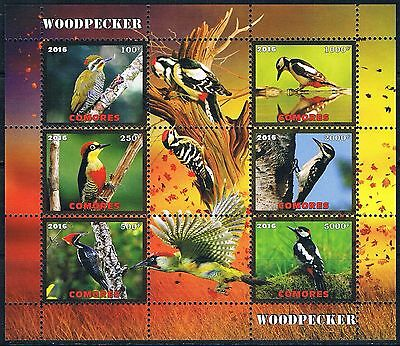 Bloc Sheet Oiseaux Pic Birds  Neuf MNH **   Comores  2016  Private  local/issue