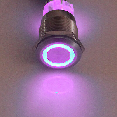 19mm 12V 5A Car Purple LED Lighted Angel Eye Metal Push Button Switch Sales