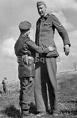 WW2 Picture Photo Canadian soldier inspects the surrendering tallest German 765
