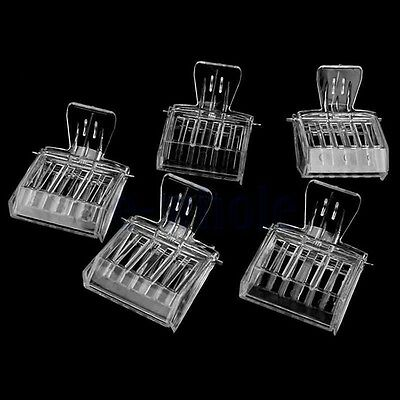 5pc l'apiculture clip Queen Bee catcher captures cage piège Apiculteur Outil GF