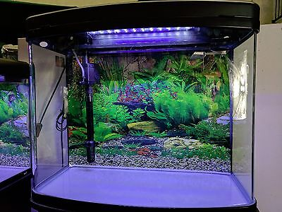 75 L Fish Tank / Aquarium with built-in LED, top filter