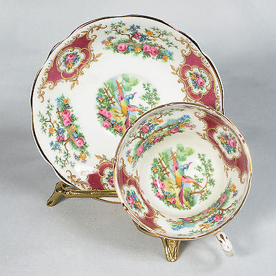 """Coalport """"broadway Marone"""" Teacup & Saucer - Red/white Floral With Exotic Birds"""
