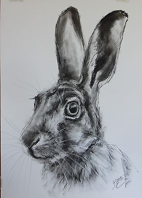 Hare Picture - ORIGINAL A2 Drawing / Sketch - Animal Art by Belinda Elliott