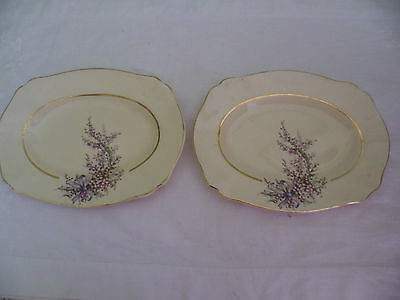 2 X Wilkinson Honeyglaze Royal Staffordshire Pottery China Cake Oval Plate Tray