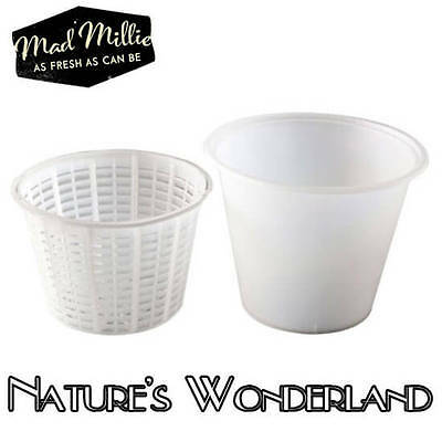 CHEESE MOULD for RICOTTA Sml Basket with Container for Italian Whey - Mad Millie