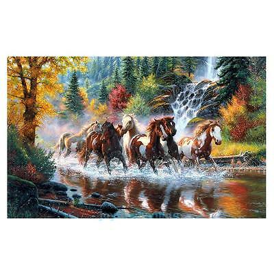 Horses DIY 5D Diamond Painting Embroidery Cross Crafts Stitch Home Decor Craft