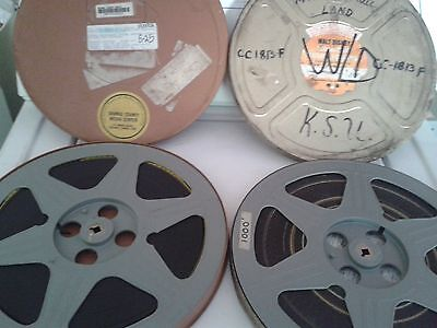 Disney 16mm Film Donald Duck and The Cat In The Hat! Vintage Movies!